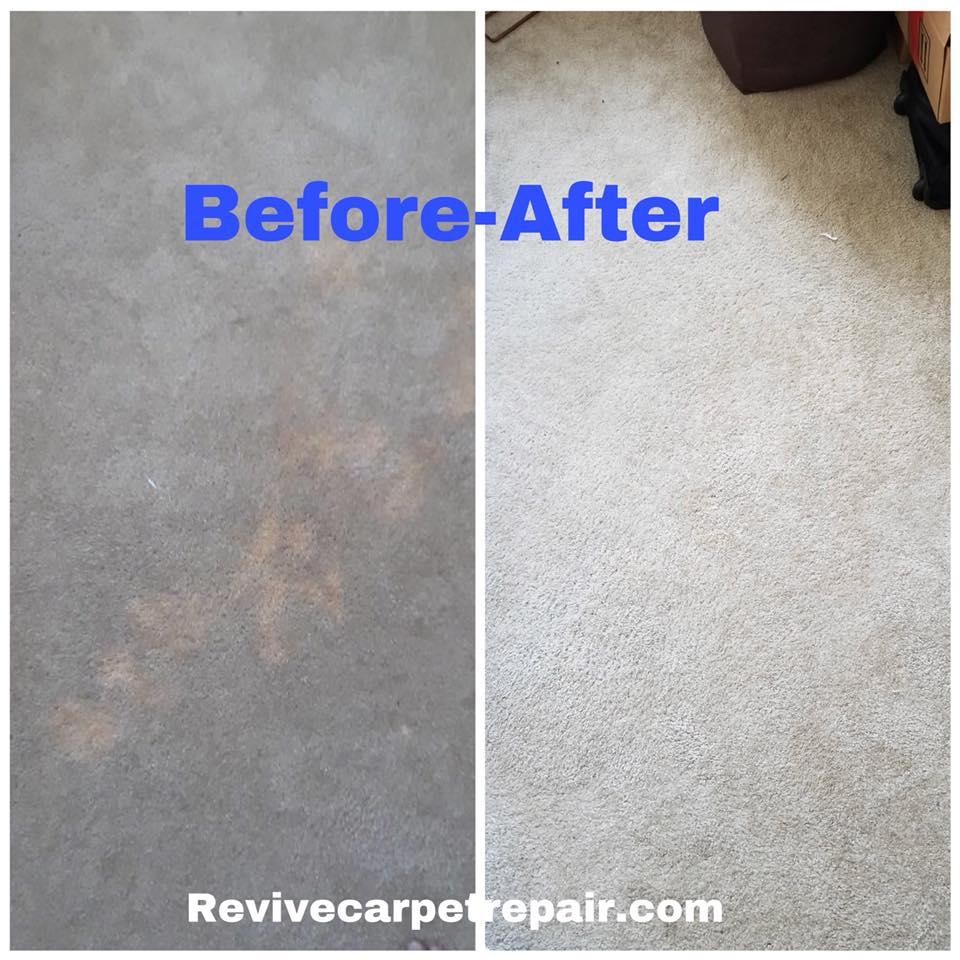 bleach spot repair| carpet dyeing chicago